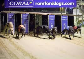 Watch Romford Dogs Live