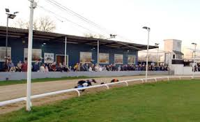 henlow-dogs
